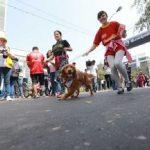 """MML: Maratón con mascotas este domingo 23 en el """"Mascotón 2018"""""""