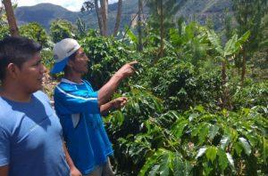 Agrobanco anuncia facilidades para afectados por huaicos