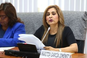 Maritza García anuncia formación de nueva bancada tras el fallo del TC