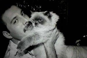 Freddie Mercury: Cumpleaños de la voz legendaria de Queen