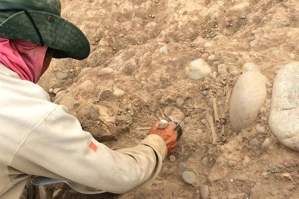 Restos óseos de 1,300 años en Parque de las Leyendas