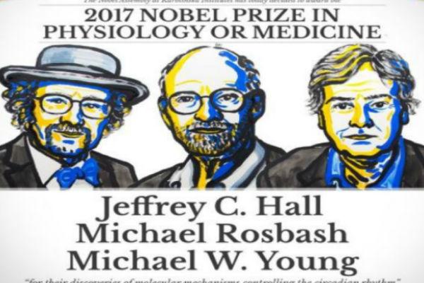 Premio Nobel 2017: Tres científicos galardonados por descubrimiento de «reloj biológico»