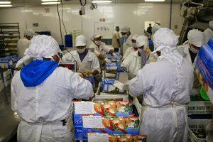 Aspec: Empresas de alimentos no cumplen normas técnicas