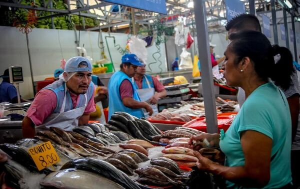¿Cómo identifico un pescado fresco en Semana Santa?