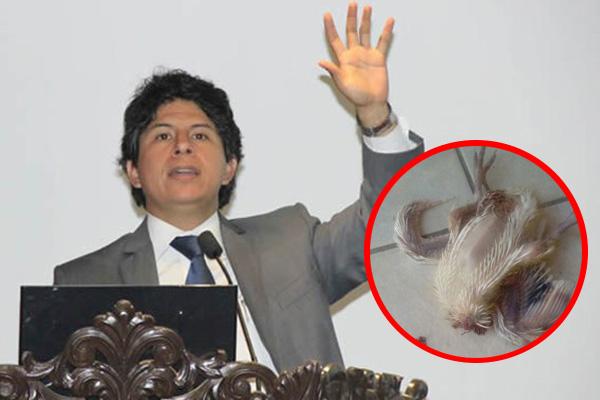 Denuncian intento de amedrentar a fiscal Páucar