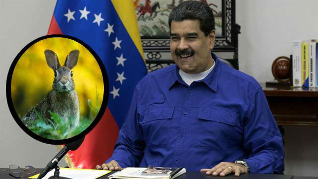 """Venezuela: Nicolás Maduro presentó el """"plan conejo"""" para combatir el hambre"""