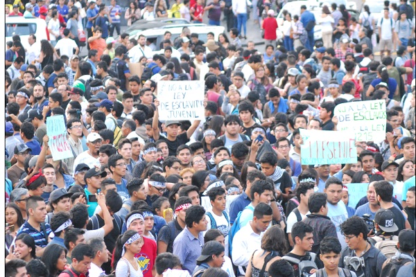 Ley pulpín: Estos centros de estudios rechazan proyecto de ley de Rosa Bartra