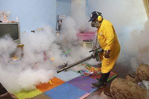 Minsa intensifica lucha contra el dengue