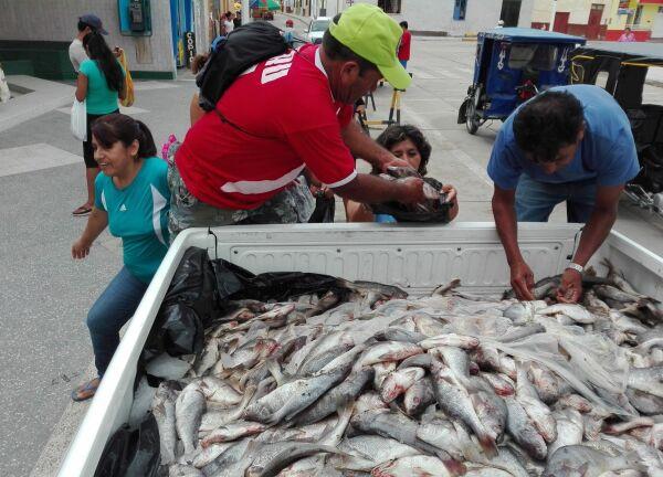 Produce dona 5 toneladas de pescado a comedores populares