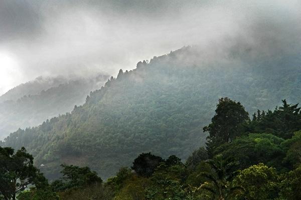 Prevén lluvias de ligeras a moderadas en la selva