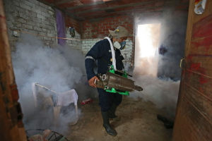 Dengue: Fumigan más de 450 colegios
