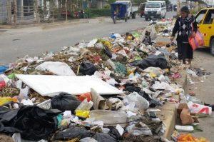 Villa María del Triunfo: Acumulación de basura origina plagas y niños son los más propensos