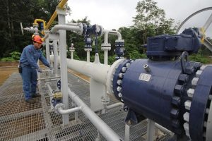 Paran planta de gas de Malvinas