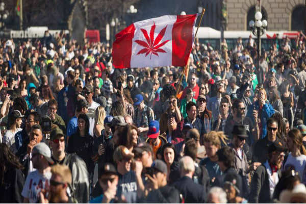 Canadá declara legal la marihuana recreativa