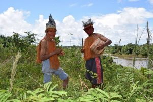 Comunidades amazónicas conservarán bosques