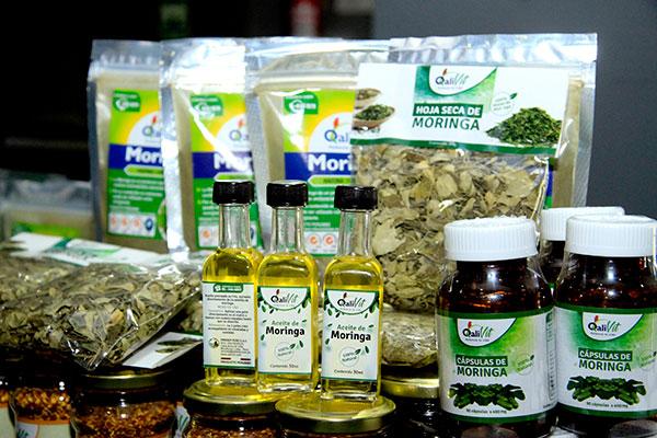 Moringa, una planta milagrosa para la medicina