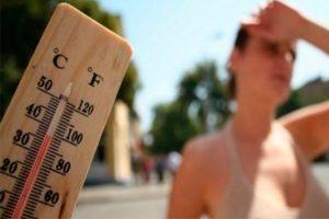 Verano 2019: Cuidado con el golpe de calor