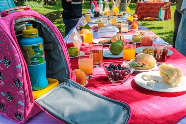 Alternativas de loncheras regionales para evitar el sobrepeso en los niños