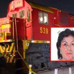 Cercado de Lima: Mujer muere arrollada por tren tras salvar a una embarazada [VIDEO]