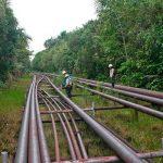 PetroPerú ha gastado más de 270 millones de soles para reparar el Oleoducto NorPeruano