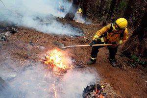 Indeci reporta 128 incendios forestales desde el 27 de julio