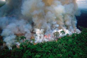 Humo de los incendios en la Amazonía ya se pueden ver desde Perú