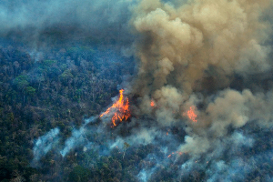 Brasil: Devastador incendio consume la Amazonia