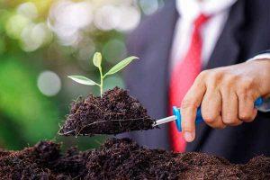 """""""Nuevo normal"""" para empresas verdes"""