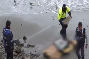 Barranco: encuentran cuerpo de surfista en la playa Los Yuyos