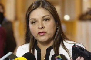 """Karina Beteta: FP decidió participar de las elecciones con la finalidad de """"cautelar la democracia"""""""