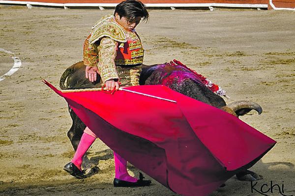 Novilleros triunfan en plaza de toro de Acho