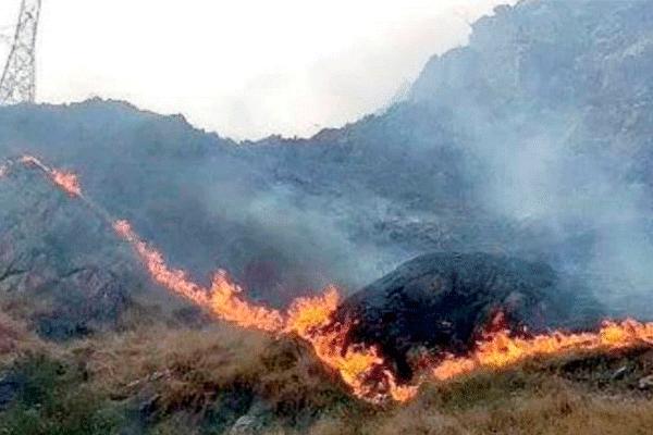 Machu Picchu: controlan incendio forestal cerca al santuario