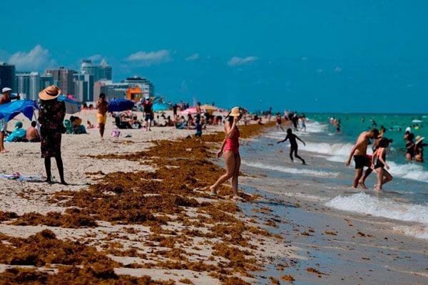 Florida vuelve a acercarse a los 5.000 casos nuevos diarios