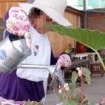 MIMP: Niños con discapacidad producen alimentos en huertos orgánicos y minijardines en Arequipa