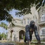La filántropa que revolucionó el estudio de los monos
