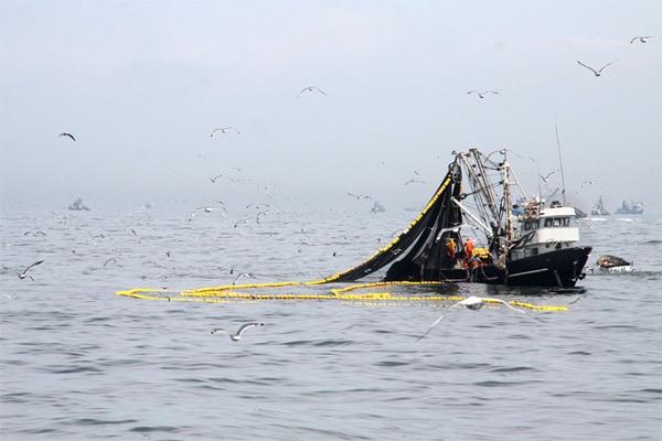 Gremios pesqueros: «De aprobarse el proyecto de ley 07837, el Congreso estaría legalizando barcos de origen ilícito»
