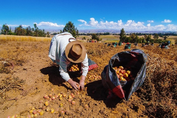 Sientan las bases de la segunda reforma agraria